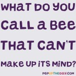 Joke: What do you call a bee that can't make up its mind?